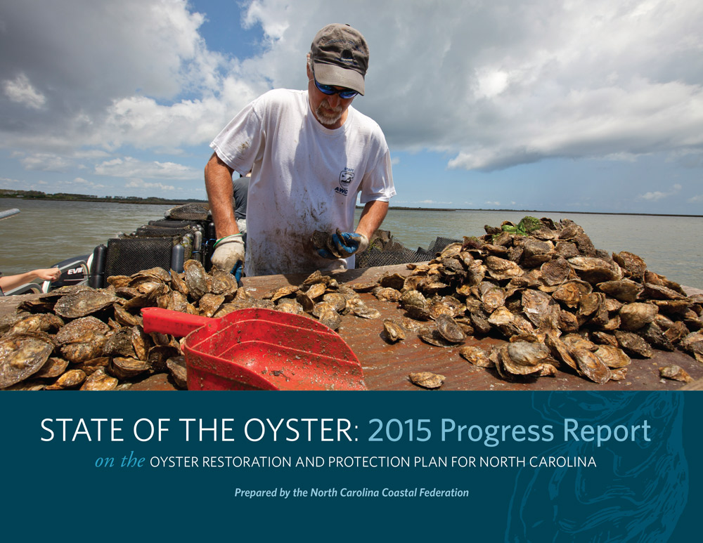 State of the Oyster 2015 Progress Report