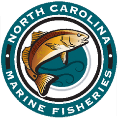 NC Department of Marine Fisheries